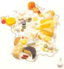 cheesmap2